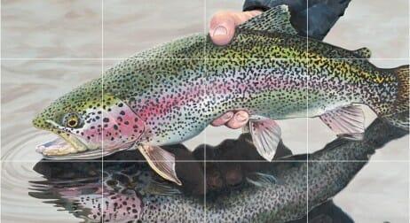Pesca Alla Trota In Laghetto